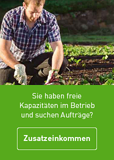 Button_L_Zusatzeinko